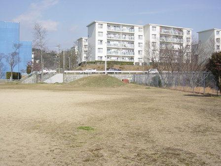 2006317_039_1